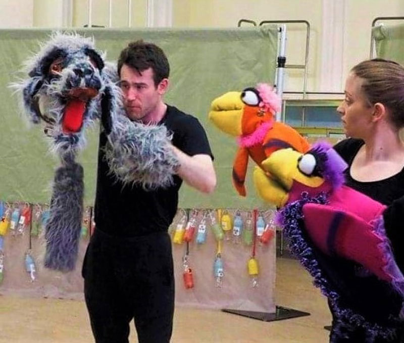 https://partykidzproductions.ie/wp-content/uploads/2020/06/Live-Puppet-Show.jpg
